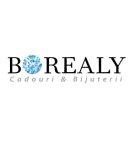 logo_borealy
